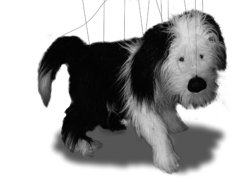 Marionette Sheepdog